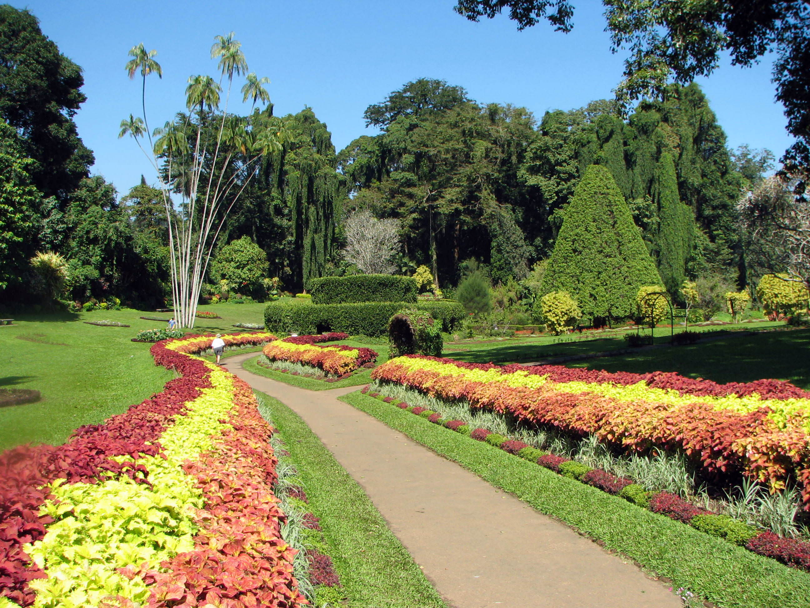 royal_botanical_gardens_peradeniya_wallpapers_free_downloads