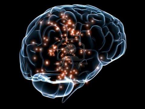 Нейронаука о том, как победить стресс раз и навсегда.
