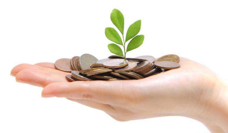 Отзыв Елены по курсу «Уверенность и деньги»