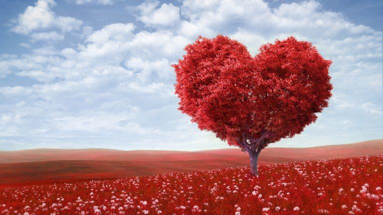 Дистанционный курс «Создание гармоничных отношений»